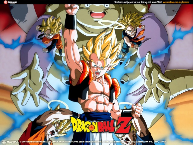 DBZ Best Warrior