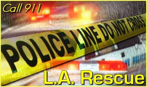 L.A. Rescue